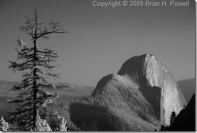 half_dome_from_olmstead_point