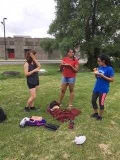 picnic d