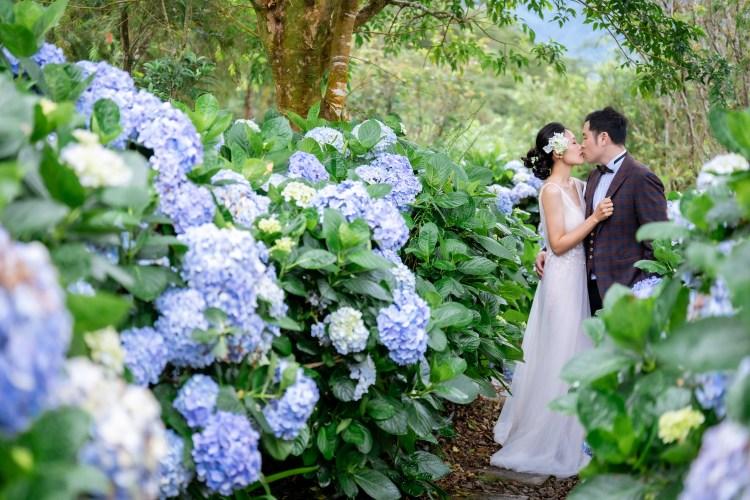 超浪漫 秘境婚紗照 浪漫的繡球花小徑  超美夢幻竹林拍攝 BH WEDDING秘境婚紗照。