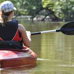 Birding by Kayak on the Delaware Canal - Bowman's Hill Wildflower Preserve
