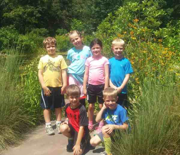 Summer Nature Play Day