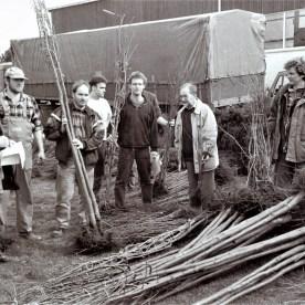 Bepflanzungsaktionen Mitte der 1990er Jahre