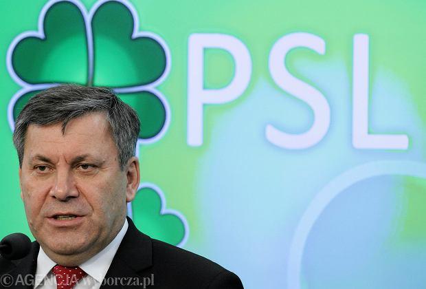 Janusz Piechociński, szef PSL