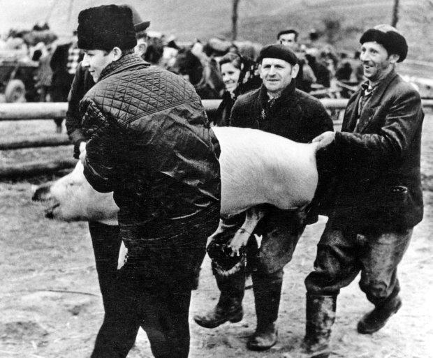W Polsce Ludowej stale brakowało mięsa, które powszechnie kupowało się bezpośrednio od chłopów (na zdjęciu: sprzedaż świniaka na wsi w 1964 r.)