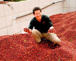 Wonderful reddish beans