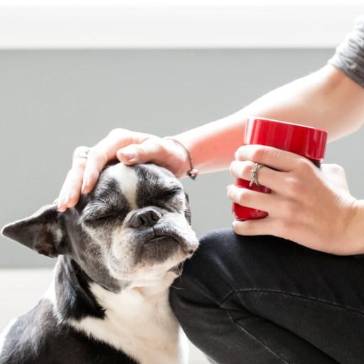 Mulher acariciando cachorro e segurando uma caneca de chá