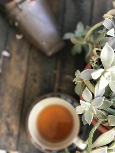 bancada em madeira rústica e xícara de chá em desfoque. Foco em um vaso de suculentas, ao lado direito da imagem, visto de cima.