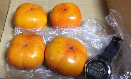 追熟前の柿と追熟後の柿画像