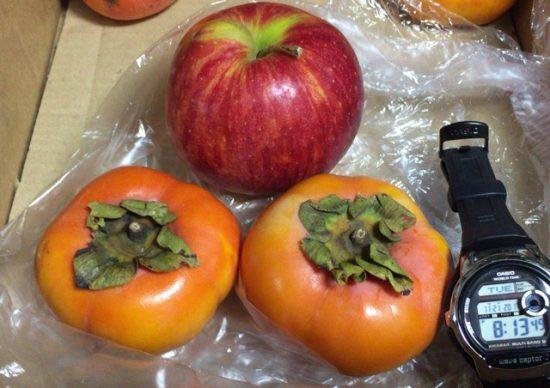 固い柿のりんごでの追熟画像