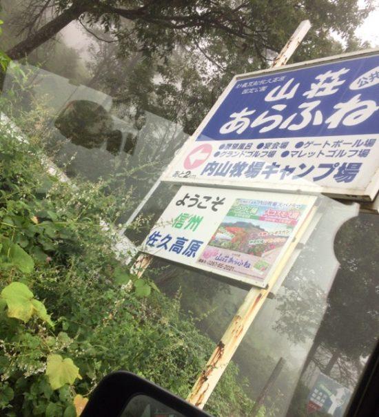 佐久コスモス 内山牧場 大コスモス園画像