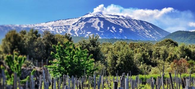 Spumanti dell'Etna