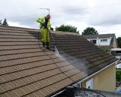 roof cleaning5