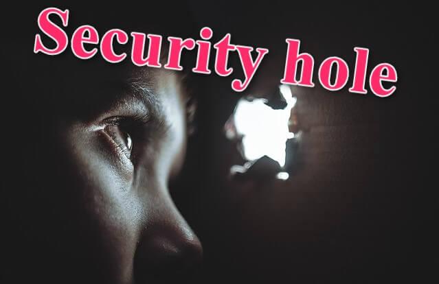 穴からのぞくセキュリティホール