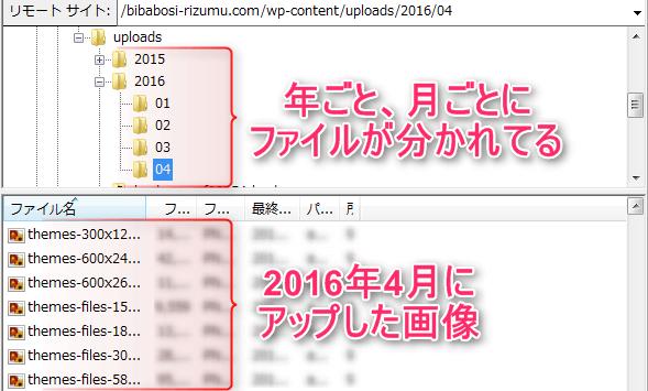 画像ファイル内内訳