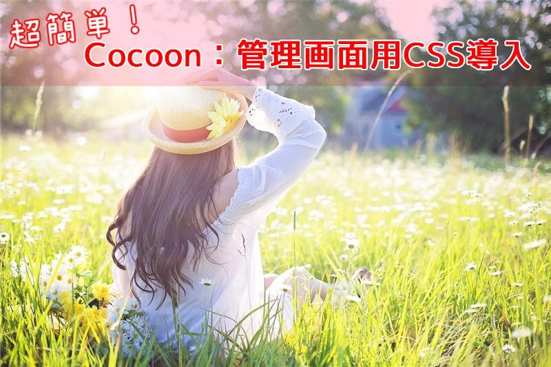 Cocoon管理画面用のCSS導入