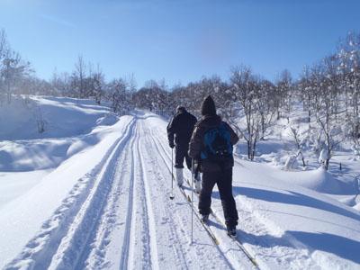 ski hiking4