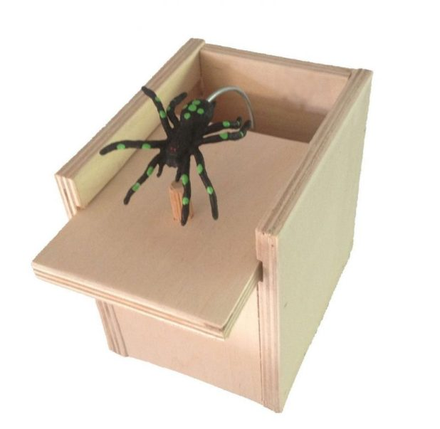 Amusing Spider Box Gift