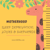 Motherhood: Sleep Deprivation, Lovies and Shepherds