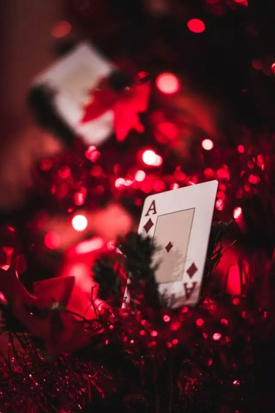 Close-up of laying card on Christmas tree