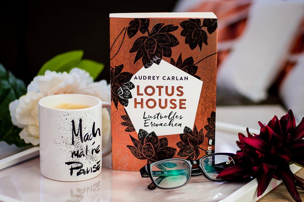 Ullstein-Audrey-Carlan-Lotus-House-Lustvolles-Erwachen-Titelbild