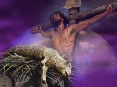 cross-lamb