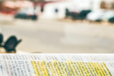 old covenant, everlasting covenant, new covenant