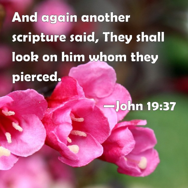 John 19:37 And again another scripture said, They shall look on him whom  they pierced.