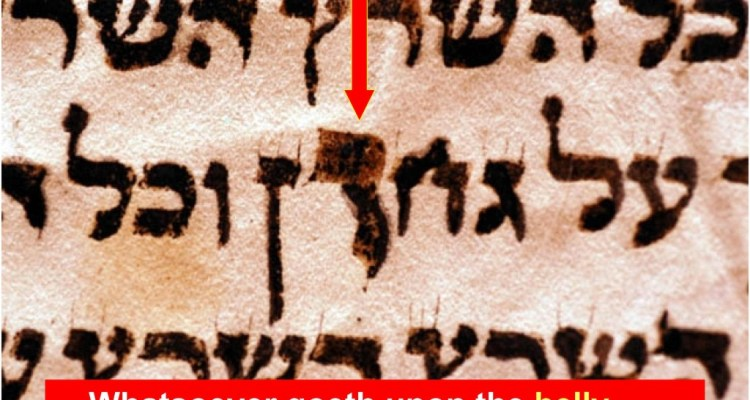 "The ""middle letter of the Torah"" is written much larger than normal. It should be the size of the letter two letters to the left."