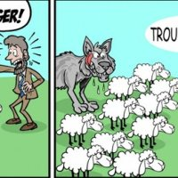 Wolf in Sheep's Clothing?
