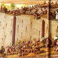 8. Tower of Babel – Origin of People Groups