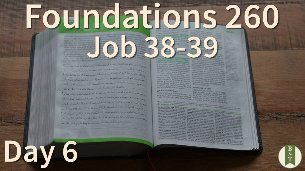 F260 Bible Reading Plan - Day 6