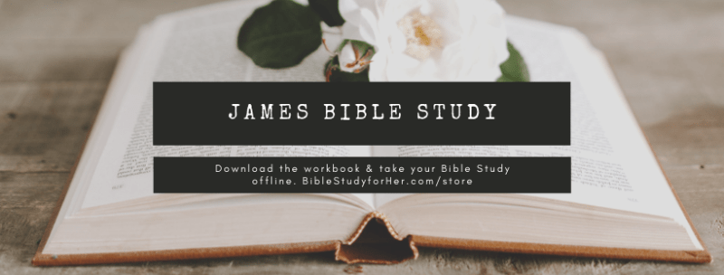 James Bible Study Workbook