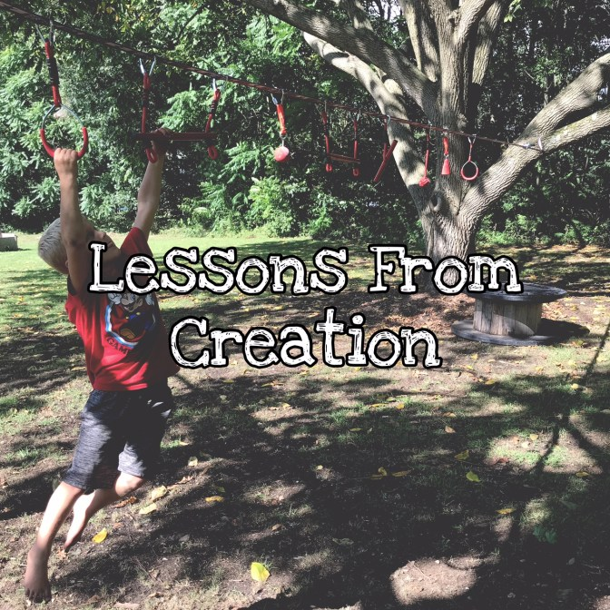 KIDScast#79 Lessons From Creation