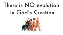 There is NO evolution in God's Creation - Video post