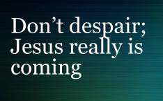 Don't Despair - Jesus Really 'IS' Coming Back!  - Dr. David Fraser Video post