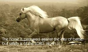 Evidence of Design in The Creation: The horse is prepared against the day of battle