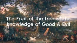 The Fruit of the Tree of the Knowledge of Good and Evil (6 Videos)
