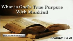 What is God's True Purpose with Mankind? Video Post