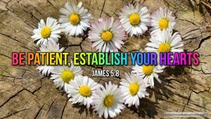 """Thought for June 10th. """"BE PATIENT, ESTABLISH YOUR HEART"""""""