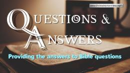 Bible Questions and Answers: Why does God allow suffering?
