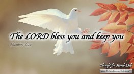 """Daily Readings & Thought for March 25th. """"THE LORD BLESS YOU AND KEEP YOU"""""""