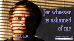 """Daily Readings & Thought for August 13th. """"FOR WHOEVER IS ASHAMED"""""""