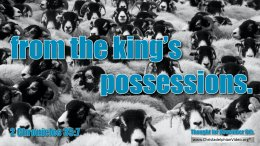 """Daily Readings & Thought for November 6th""""FROM THE KING'S POSSESSIONS"""""""