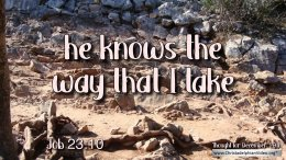 "Daily Readings & Thought for December 19th. ""HE KNOWS THE WAY THAT I TAKE"""