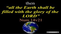 2020 Review! 'All the Earth shall be filled with the glory of the LORD: (Num 14:21)