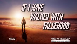 "Daily Readings & Thought for December 23rd ""IF I HAVE WALKED IN FALSEHOOD"""