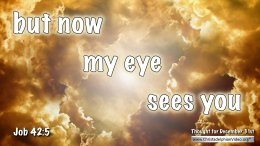 "Daily Readings & Thought for December 31st. ""BUT NOW MY EYE SEES YOU"""