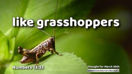"""Daily Readings & Thought for March 30th. """"LIKE GRASSHOPPERS"""""""