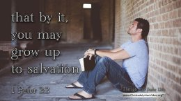 """Daily Readings & Thought for June 12th. """"GROW UP TO SALVATION"""""""