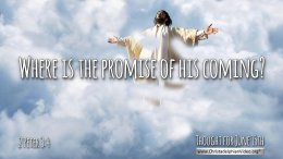 """Daily Readings & Thought for June 15th. """"WHERE IS THE PROMISE …?"""""""